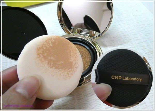 CNP-6.jpg