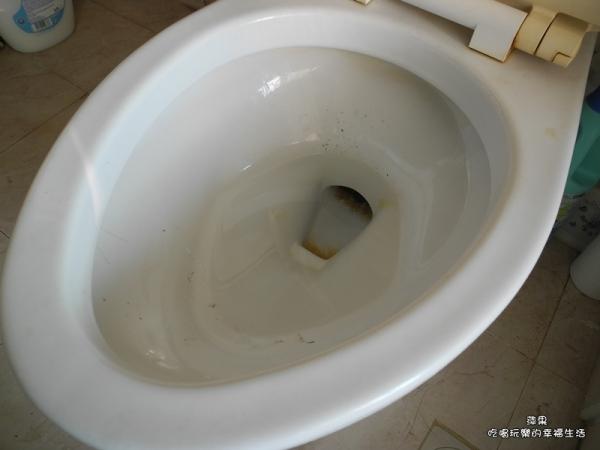 3M 百利菜瓜布馬桶刷香水系列10.jpg