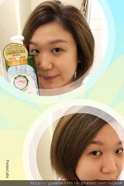 (洗髮精)台灣之光~艾娜兒蜂蜜植萃健康洗髮精 (染燙受損髮質專用)