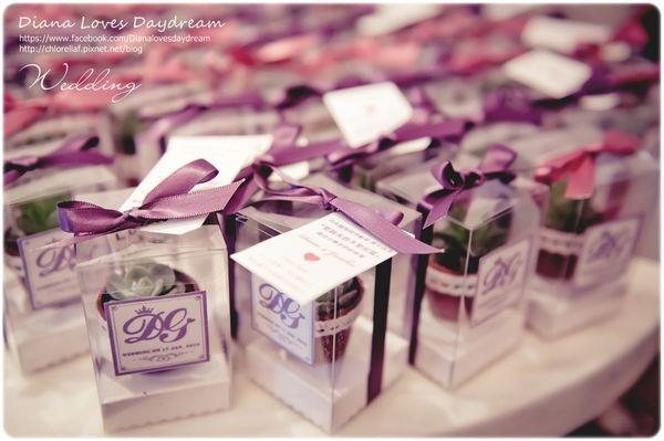 喜喜 ▍♥超受好評婚禮小物 ♥ 專屬LOGO包裝,多肉植物小禮盒DIY
