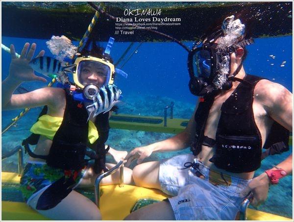 沖繩 ▍海島旅遊一定要帶的防水相機 ♥ Olympus TG-4 ♥ 陸上海底一網打盡,畫質清晰美麗