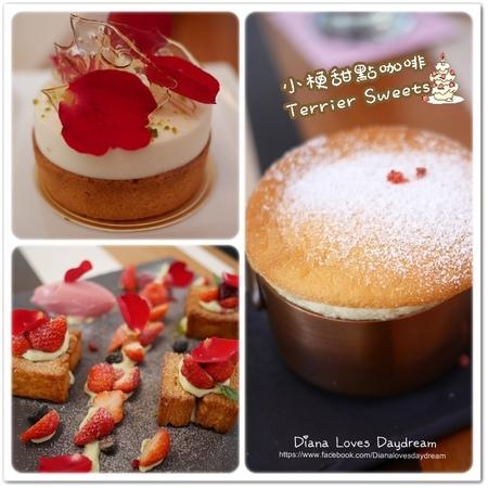 食記 ▍台中 要預約的夢幻甜點 ♥ 小梗甜點咖啡 Terrier Sweets  ♥