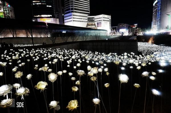 【逼先生專欄】《2016首爾自由行》廣藏市場朴家綠豆煎餅、東大門設計廣場LED花海