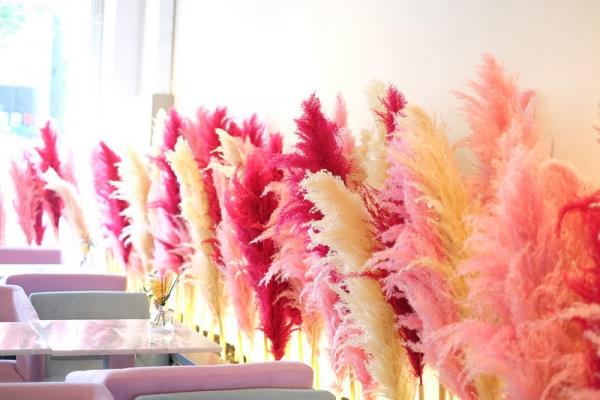 【逼先生專欄】《大邱自由行全攻略》3號線明德站:粉色羽毛超華麗咖啡廳「H PROJECT」,竟有附設攝影間!!!