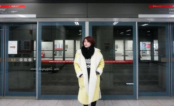 【逼先生專欄】《2016首爾自由行》高速巴士客運站地下街、백암왕순대血腸湯飯,弘大商圈、必吃教授烤腸