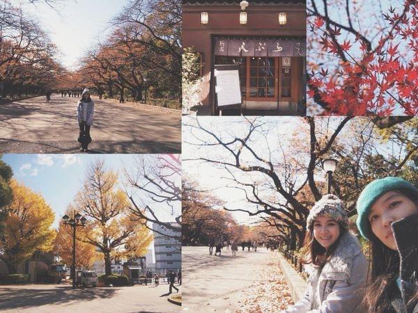 【旅行 東京自助】上野公園的楓葉和銀杏*新宿天ぷら つな八天婦羅