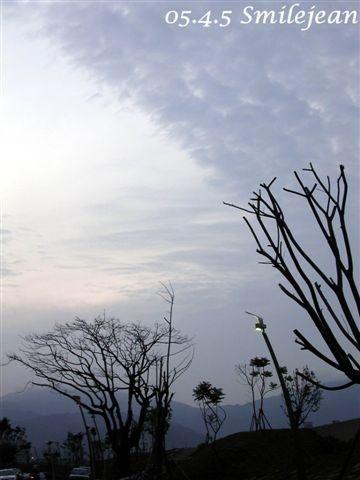 [回憶]童年的大樹