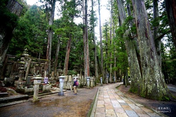 奧之院.和歌山自駕遊▋高野山的聖地、空海大師與戰國群雄長眠之所,日本三大靈場