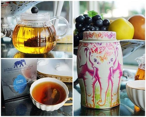 Williamson Tea 威廉森茶~源自英國品味獨具,大象茶罐造型吸睛迷人(文末抽獎)
