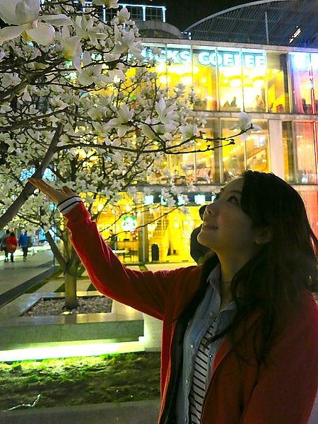 [北京] 自由行行程規劃&住宿 ♥ 新僑諾富特飯店