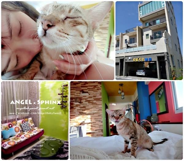 「貓店長」墾丁恆春市區新開民宿  寬敞舒適的9453旅店