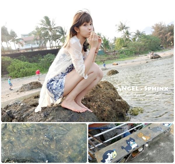 「台東」不可思議!在海邊用海藻麵包餵到超多海魚  杉原生態海洋公園