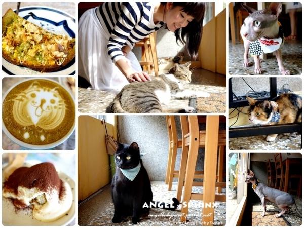 「貓店長」台南市  療癒&美味程度雙爆錶 貓門 Cafe' Moment