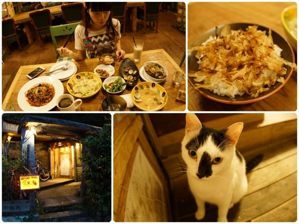 「貓店長」新北瑞芳|享受市郊山林裡的自然寧靜愜意  食不厭