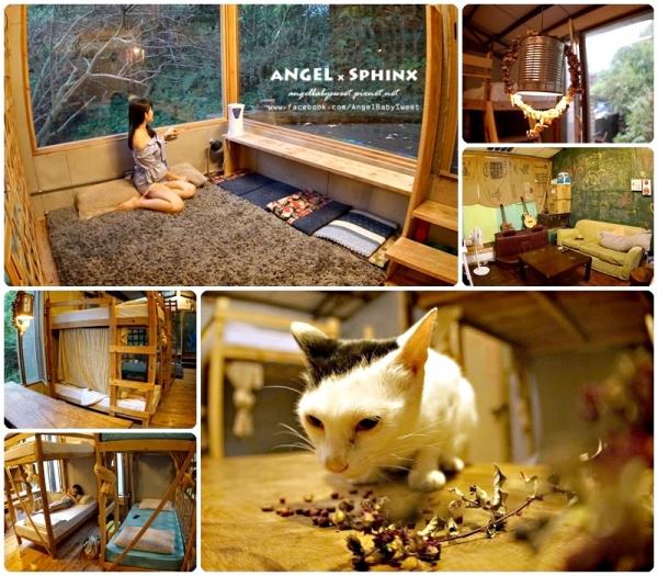 「貓店長」新北瑞芳|享受市郊山林裡的自然寧靜愜意  寬宿 背包客棧