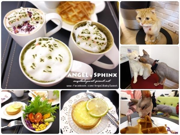 「貓店長」台中市西區  超萌貓貓拉花 咕嚕貓Cafe 科博旗艦店