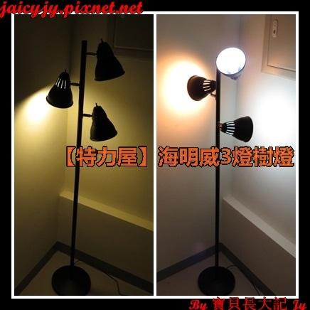 【特力屋】海明威3燈樹燈  小小花費 讓居家氣氛加倍