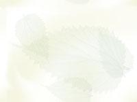 【咪娜醬的教養路】3Y~人生的第一個反抗期+不要放大孩子的缺點及負面行為