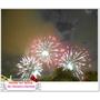 ►2013年新年快樂 新年新希望◄