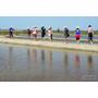 ▋嘉義旅遊▋布袋.洲南鹽場~體驗二百年的鹽田風光