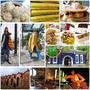 2013▋宜蘭市美食旅遊▋宜蘭景點懶人包分享