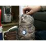 手機,鑰匙,寵物全現身tinyFinder藍牙追蹤器