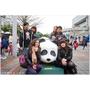 『台北市』超萌圓仔半日遊─動物園看圓仔趣&熊貓軍團侵襲台北市