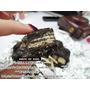 ►我家也有型男大主廚 限定版 雷神巧克力 小黑人手作 簡單又好吃◄