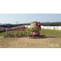 【韓國・Jeju・2014】Hello Kitty Island登陸濟州島