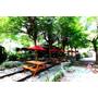 【彰化】森林系。童話秘密花園般的咖啡廳ღ石頭魚鐵道庭園咖啡廳