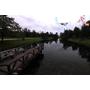 【台東】來台東必遊的景點。宛如歐洲景緻ღ台東森林公園--琵琶湖
