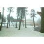 【南投魚池】天丫~這裡讓我有來到日本的錯覺ღ日月潭風景區の玄奘寺