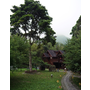 【南投溪頭】還以為置身在國外小木屋的金台灣山莊民宿
