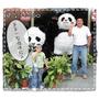 【公益】一起加入2012年panda-quest成都熊貓守護使!