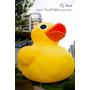 【淡水】黃色小鴨流浪到淡水!
