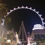 【美國・Las Vegas・2014】 沙漠中的摩天輪