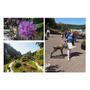 《Sonia in Canada》The Butchart Gardens 夢幻的童話仙境,布查花園在Victoria