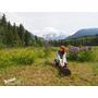 《Sonia in Canada》出發吧!來去班夫國家公園BANFF體驗大自然的震撼