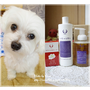 呵護毛小孩天然專用洗劑 ❥ 樂樂購~健康洗劑<<金盞花潔毛慕絲、橄欖油液體皂、無患子胺基酸手工皂>>