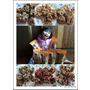【試吃】台東伴手禮~每一口都吃得到幸福的口福手作坊杏仁酥!
