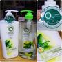 [護髮]Herbal Essences最新上市X白茶薄荷光澤柔亮系列X零矽靈和100%天然草本精油