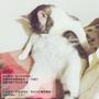 【APP】貓主子駕到 ♥ 貓控必備,捕捉傲驕貓咪吧 ねこあつめ(iOS)