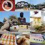 彰化旅遊▋YouBike 彰化市一日遊~城市移動新體驗,輕鬆自在逛景點,吃美食