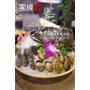 【台北內湖區】活海鮮供應,新鮮的好品質.團緣精緻鍋物