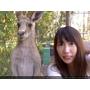 ★澳洲必備袋鼠自拍!!可倫濱野生動物園