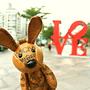 MCM兔子遇見台北「萌萌噠」 時尚名人號召朝聖MCM台北101新概念店