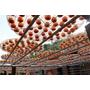 【羽諾食記】新埔鎮金漢柿餅產業文化園區♥柿餅廠柿染DIY體驗♥新竹縣觀光休閒之旅