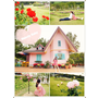 【雲林景點】蘿莎玫瑰山莊 Rosa Hill♥浪漫又夢幻的玫瑰花園區,古典歐風的白色拱門與童話粉紅小屋
