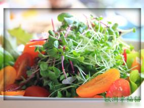 芽菜大集合:奇亞籽的另類吃法