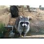 【親子旅遊】好玩又便宜的新竹市立動物園,寶寶第一次與動物的親密接觸